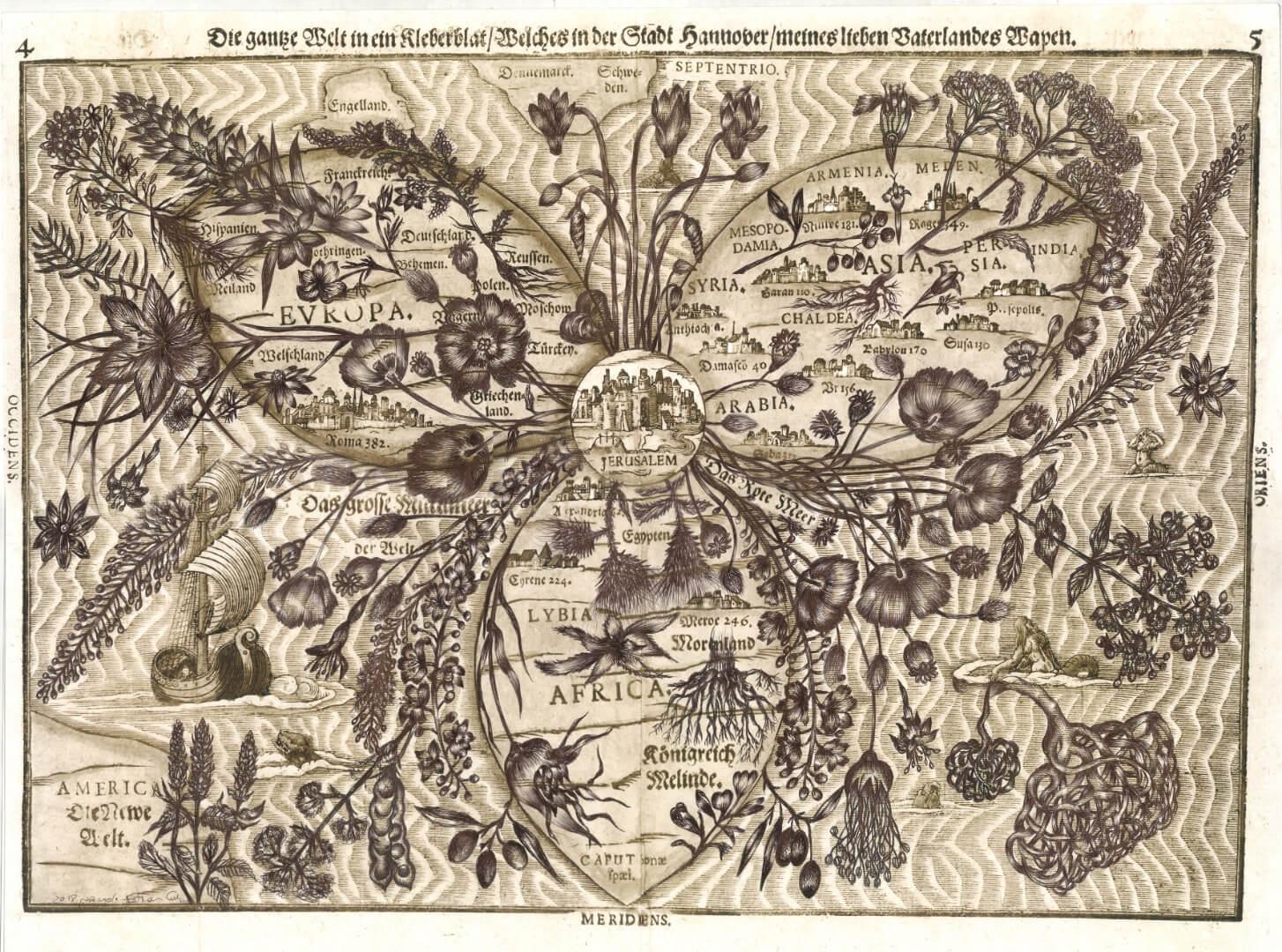 אסתר כהן ירושלים, צמחי מרפא (בעקבות מפת בינטינג)