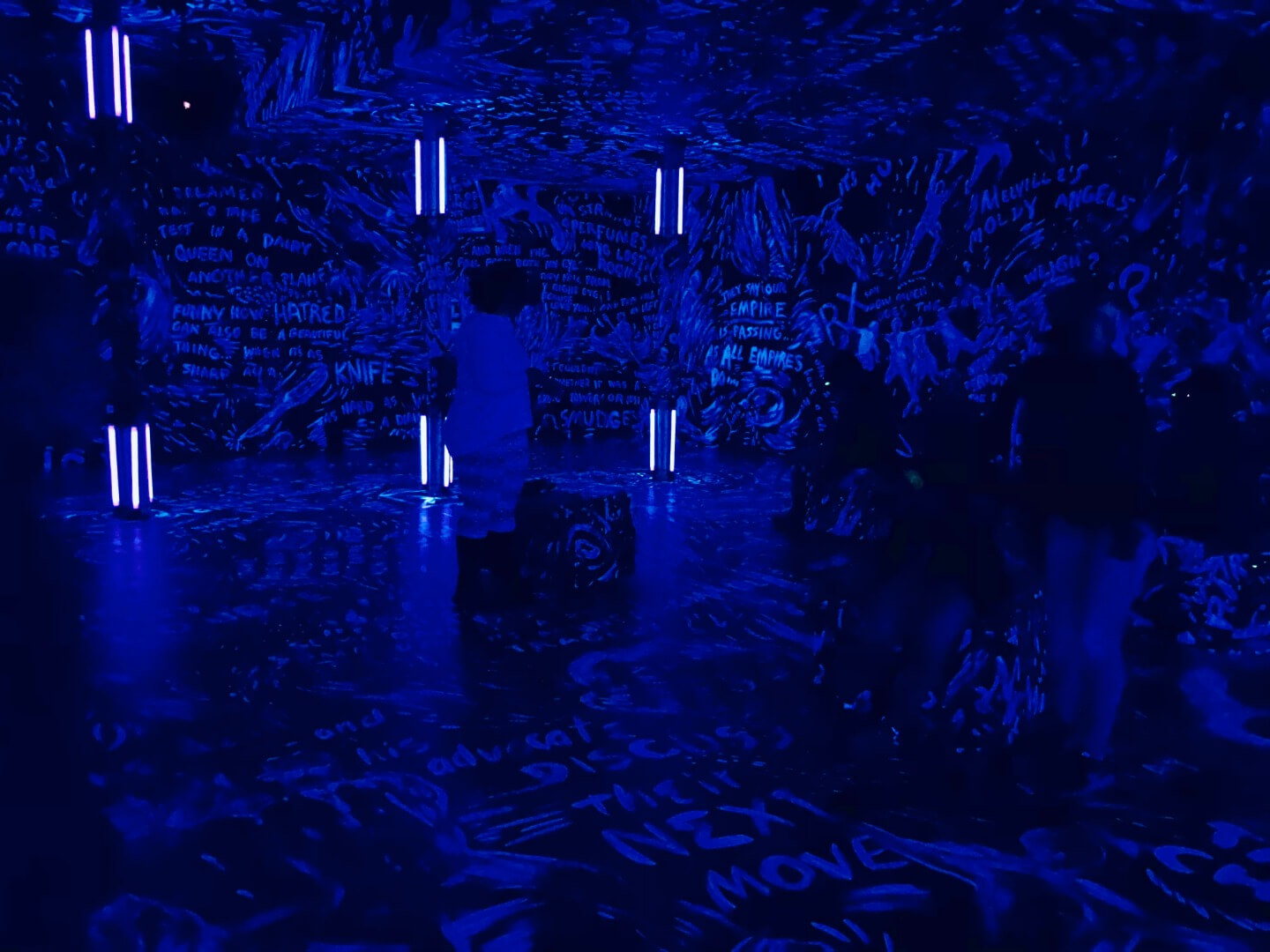 3_Laurie Anderson, The Chalkroon, 2017