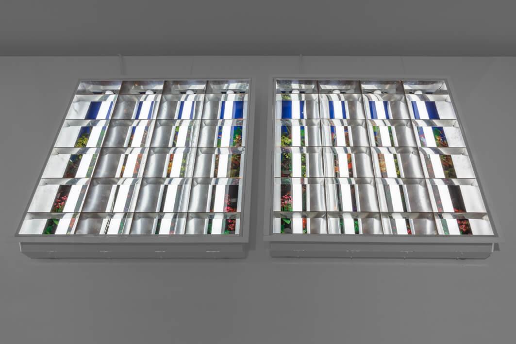 ברק רביץ, ללא כותרת, 2009, גוף תאורה פרבולי פלורסנטי, פוסטר,