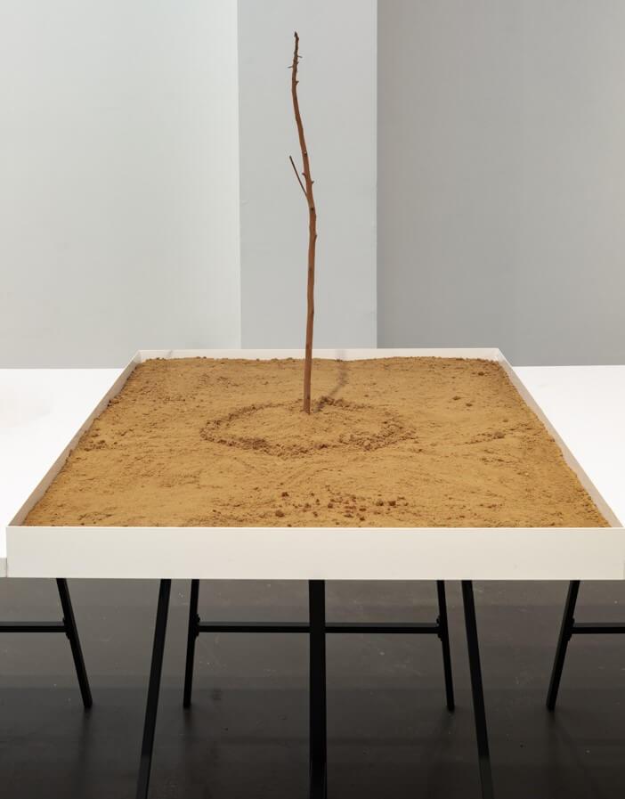 דני קרוון, מקום, 2020, חול וענף עץ