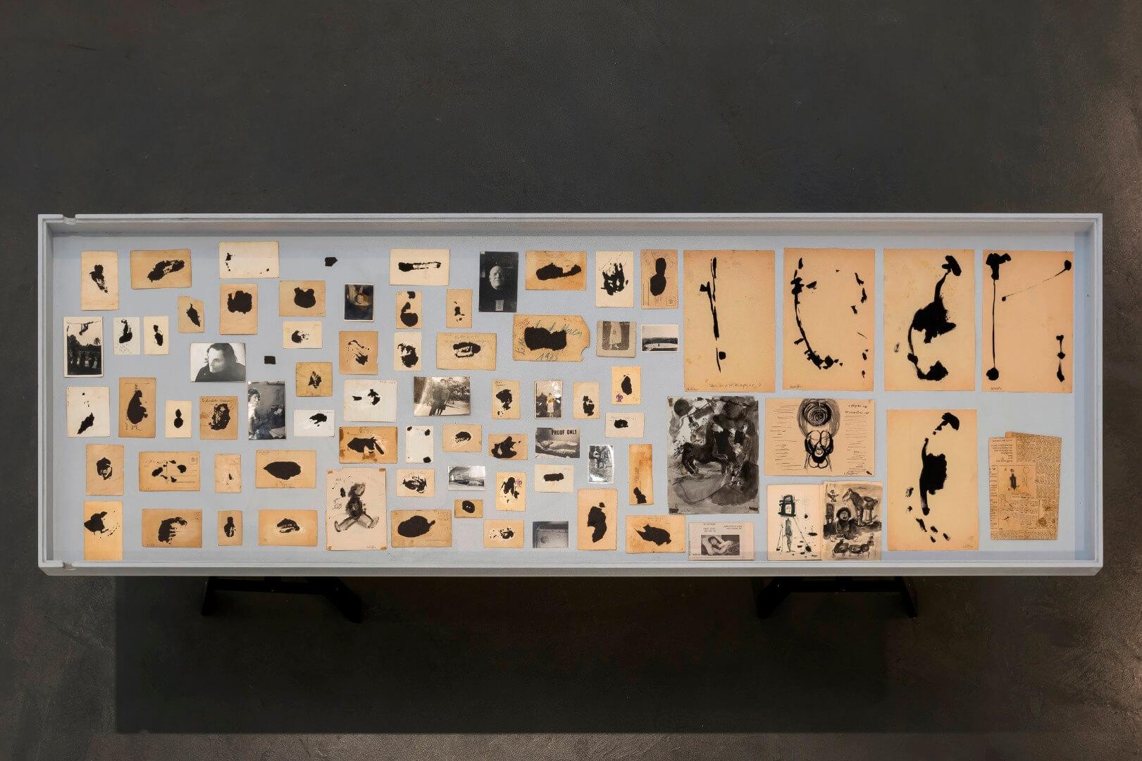 מיכל היימן ואורי שטטנר גנטיקה של ציור מראה הצבה